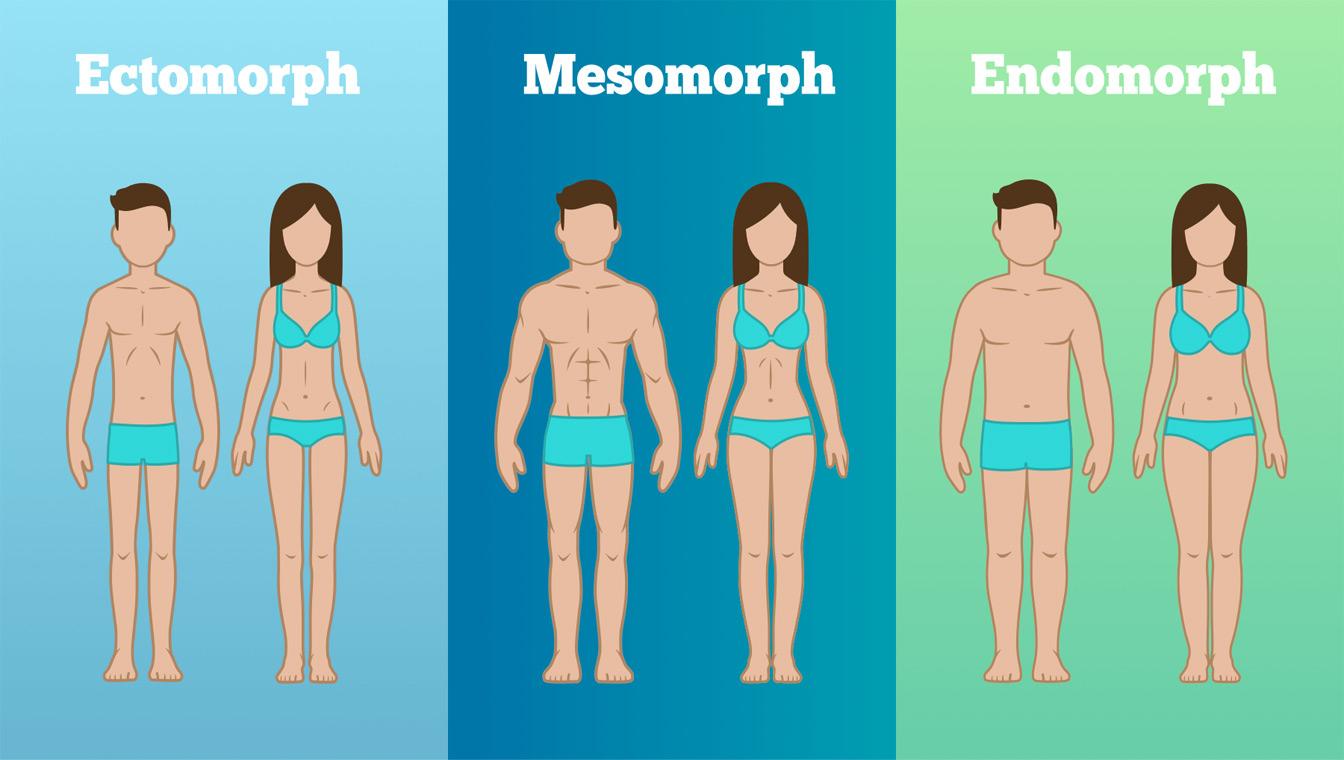 تیپ های بدنی - لاغری موضعی